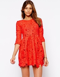 Arrogant Cat Long Sleeve Lace Skater Dress Red