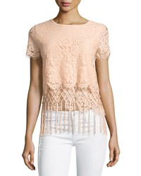 Design History Layered Fringe Trim Cropped Lace Tee Sandpiper