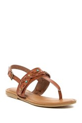 Ziginy Bevelyn Thong Sandal Brown