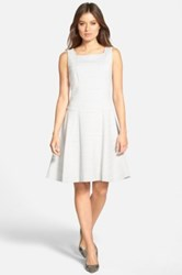 Hugo Boss 'Hirene' A Line Dress Gray