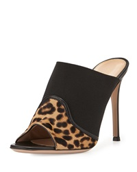 Gianvito Rossi Leopard Leather Mule