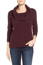 Caslon Cashmere Cowl Neck Sweater Regular And Petite Purple
