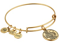 Alex And Ani Charity By Design My Love Is Alive Charm Bangle Rafaelian Gold Finish Bracelet