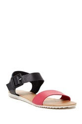 Red Circle Flamingo Flat Sandal Multi