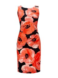 Wallis Red Floral Printed Shift Dress