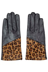 Leather Gloves Multi