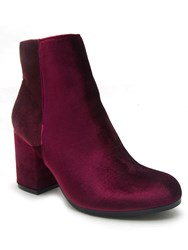 Qupid Rannel Ankle Boot Purple