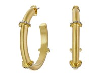 Karen Kane Wonderland Hoop Earrings Gold Earring