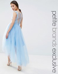 Chi Chi Petite London Lace Scallop Back High Low Midi Dress With Tulle Skirt Pale Blue