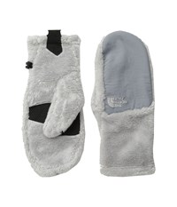 The North Face Denali Thermal Mitt Lunar Ice Grey Extreme Cold Weather Gloves Bone