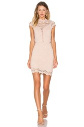 Nightcap Dixie Lace 16Th District Mini Dress Blush