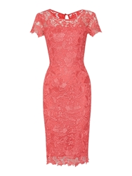 Shubette Cap Sleeve Shoulder Gupuire Lace Dress Pink