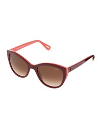 Lanvin Large Acetate Cat Eye Sunglasses Pink