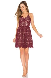 J.O.A. Fit And Flare Lace Dress Burgundy
