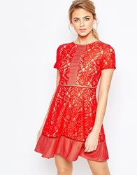 Oasis Lace Skater Dress Red