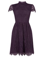Oasis Gothic Lace Dress Dark Purple