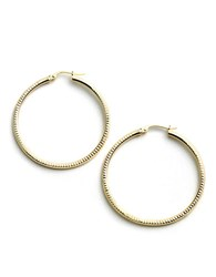 Lord And Taylor 18 Kt Gold Over Sterling Silver Ribbed Hoop Earrings