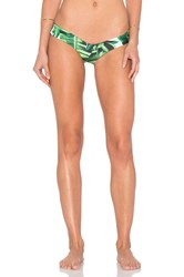 Stone Fox Swim Tucker Bikini Bottom Green