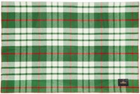 Undercover Green Check Scarf