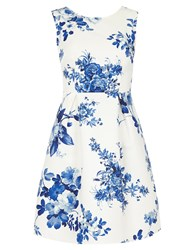 Dorothy Perkins Luxe China Floral Prom Dress Blue