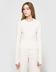 Christophe Lemaire Short Sweater In Winter White