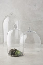 Anthropologie Glass Display Cloche Clear