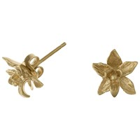 Dower And Hall 18Ct Gold Vermeil Nirvana Small Orchid Stud Earrings