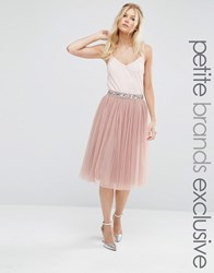Maya Petite Sequin Tulle Midi Skirt With Embellished Waist Blush Pink