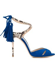 Casadei Snakeskin Effect Detail Sandals Blue