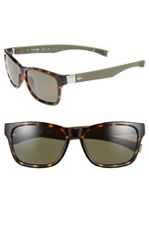 Lacoste 55Mm Retro Sunglasses Havana Green