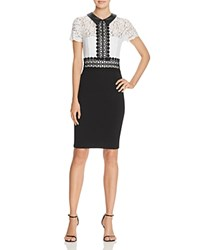 Aqua Lace Ponte Collared Dress White Black