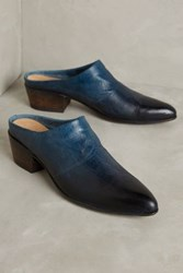 Anthropologie Lucchese Eliza Mules Blue
