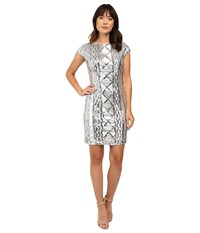 Adrianna Papell Cap Sleeve Cable Sequin Dress Silver Women's Dress
