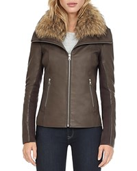 Soia And Kyo Fur Collar Leather Jacket Storm