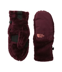 The North Face Denali Thermal Mitt Deep Garnet Red Extreme Cold Weather Gloves Brown