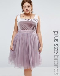 Little Mistress Plus Velvet Bodice Skater Dress With Tulle Skirt Lavender Purple