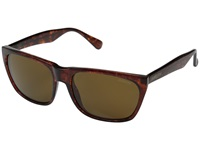 Smith Optics Tioga Vintage Havana Polar Brown Carbonic Tlt Lenses Fashion Sunglasses