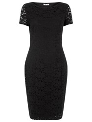 Precis Petite Jasmin Lace Dress Black