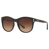 Coach Hc8190 Oval Sunglasses Black Brown Gradient