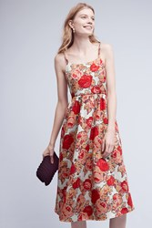 Anthropologie Red Rose Dress Red Motif