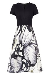 Coast Lazio Print Isabella Dress Multi Coloured