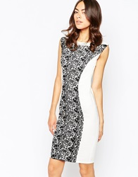Paper Dolls Paperdolls Pencil Dress With Lace Panel Creamblack