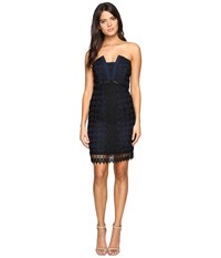 Adelyn Rae Lace Tube Black Navy Women's Dress