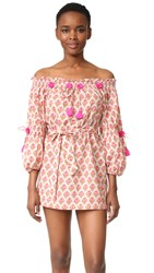 Figue Iman Mini Dress Pink Floral