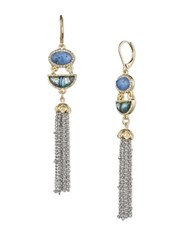 Lonna And Lilly Sodatlite Mother Of Pearl Epoxy Stone Tassel Drop Earrings Gold