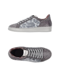 Soya Fish Low Tops And Trainers