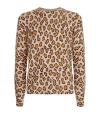Acne Studios Peele Leopard Print Sweater Male Brown