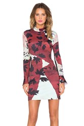 Clover Canyon Rustic Vines Dress Maroon