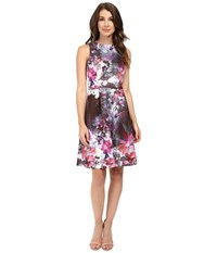 Adrianna Papell Placed Print Fit Flare Scuba Dress Pink Multi Women's Dress