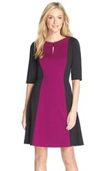 Petite Women's Tahari Colorblock Ponte Fit And Flare Dress
